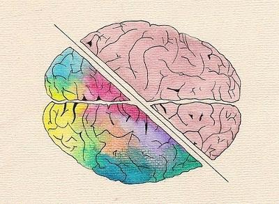 Время мозговой активности