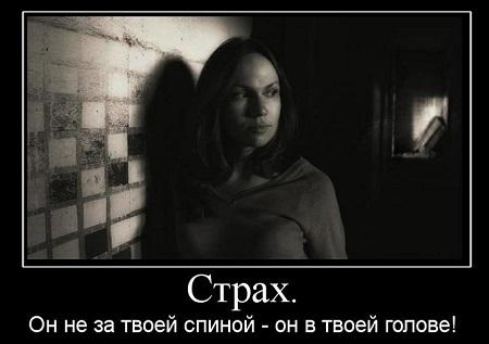 Страх в твоей голове