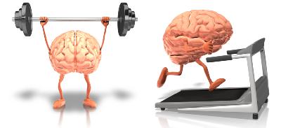 Обучение мозга