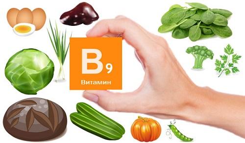 Витамин B9 в продуктах