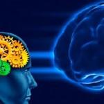 Как повысить активность мозга
