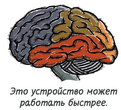 Как улучшить мозговую активность