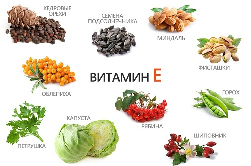 Витамин E для памяти взрослым