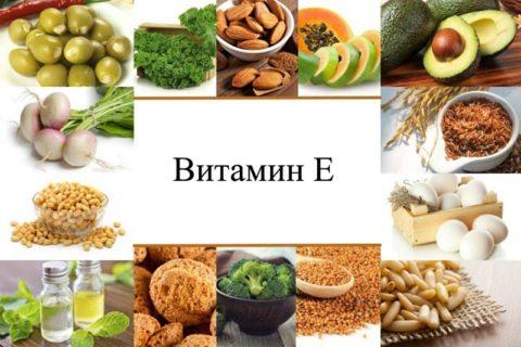 Витамин E для памяти