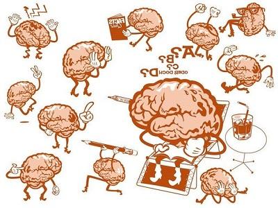 Мозг фиксирует в память