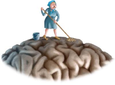 Мозг очищает мусор