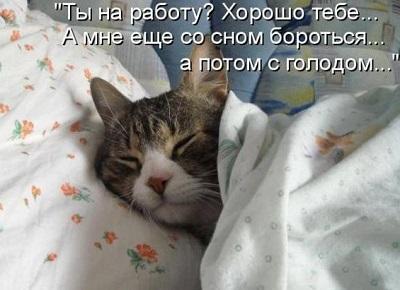 Сон улучшает настроение