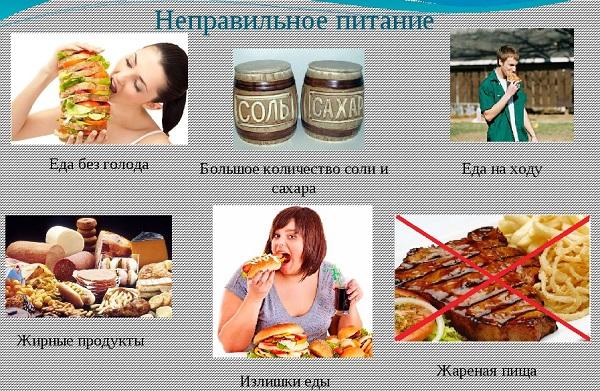 Неправильное питание ухудшает работу мозга
