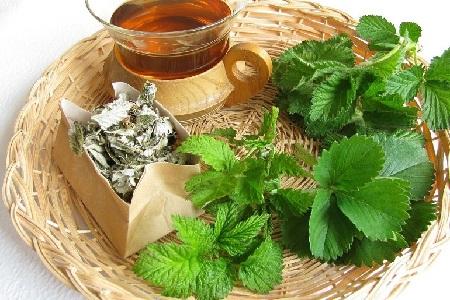 Чай из листьев зелёной земляники
