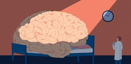 Мозг во время сна