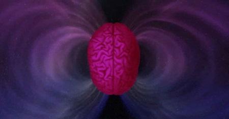 Ощущение магнитного поля мозгом