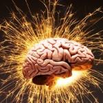 Способности мозга человека